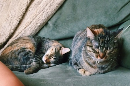 Mica i Nani